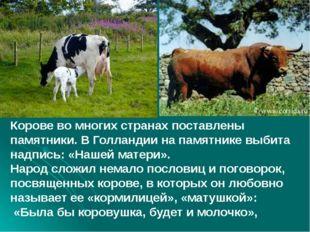 Корове во многих странах поставлены памятники. В Голландии на памятнике выби