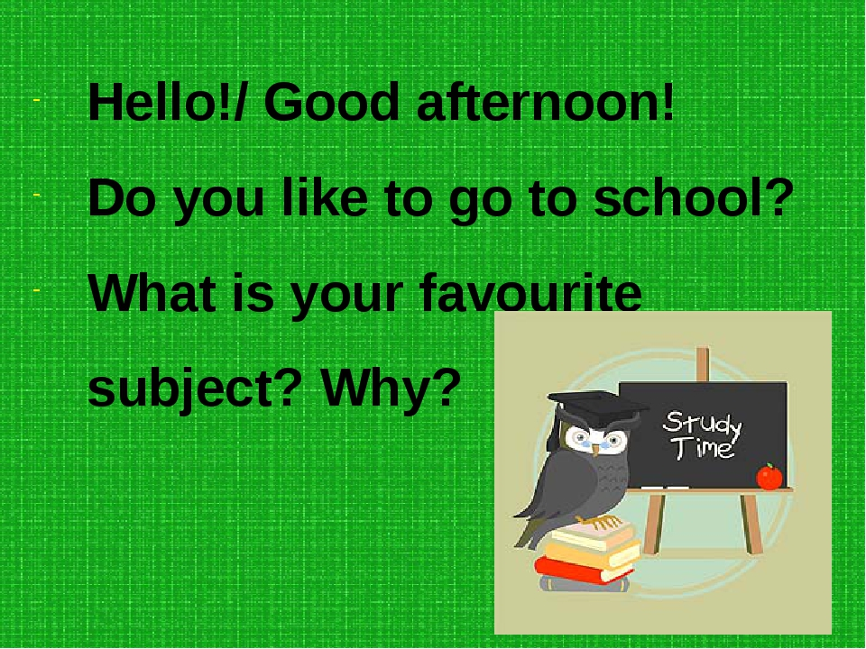 Hello!/ Good afternoon! Do you like to go to school? What is your favourite s...