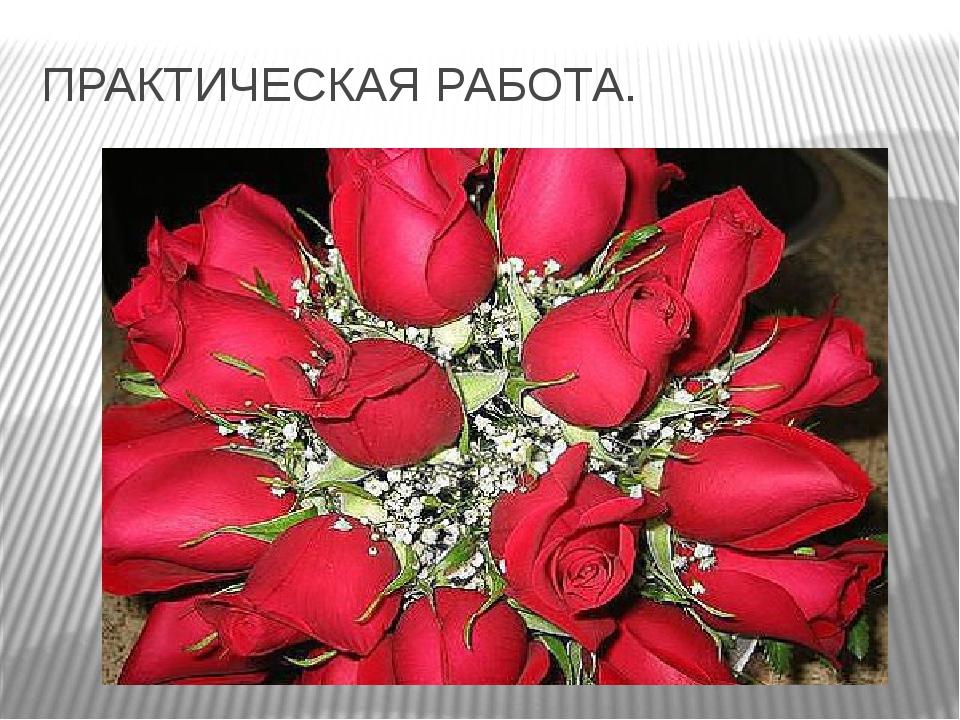 ПРАКТИЧЕСКАЯ РАБОТА.
