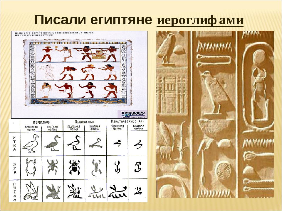 Писали египтяне иероглифами