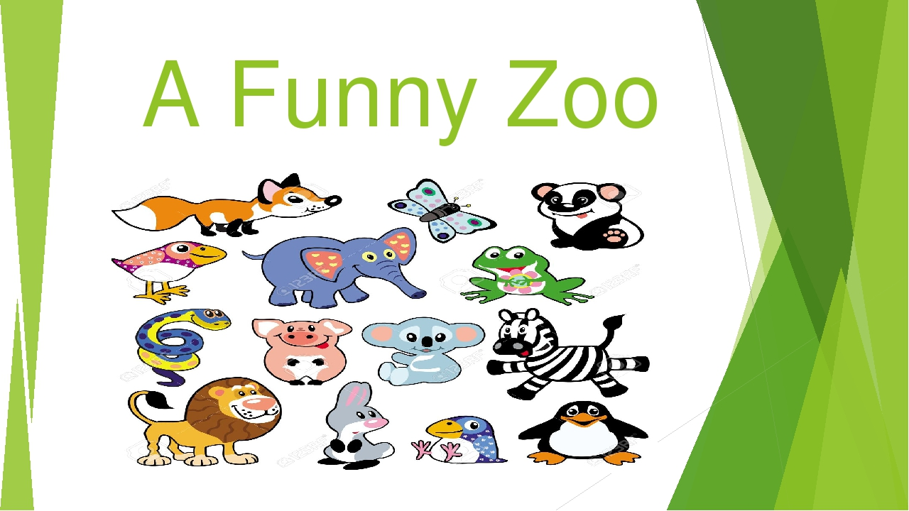 A Funny Zoo