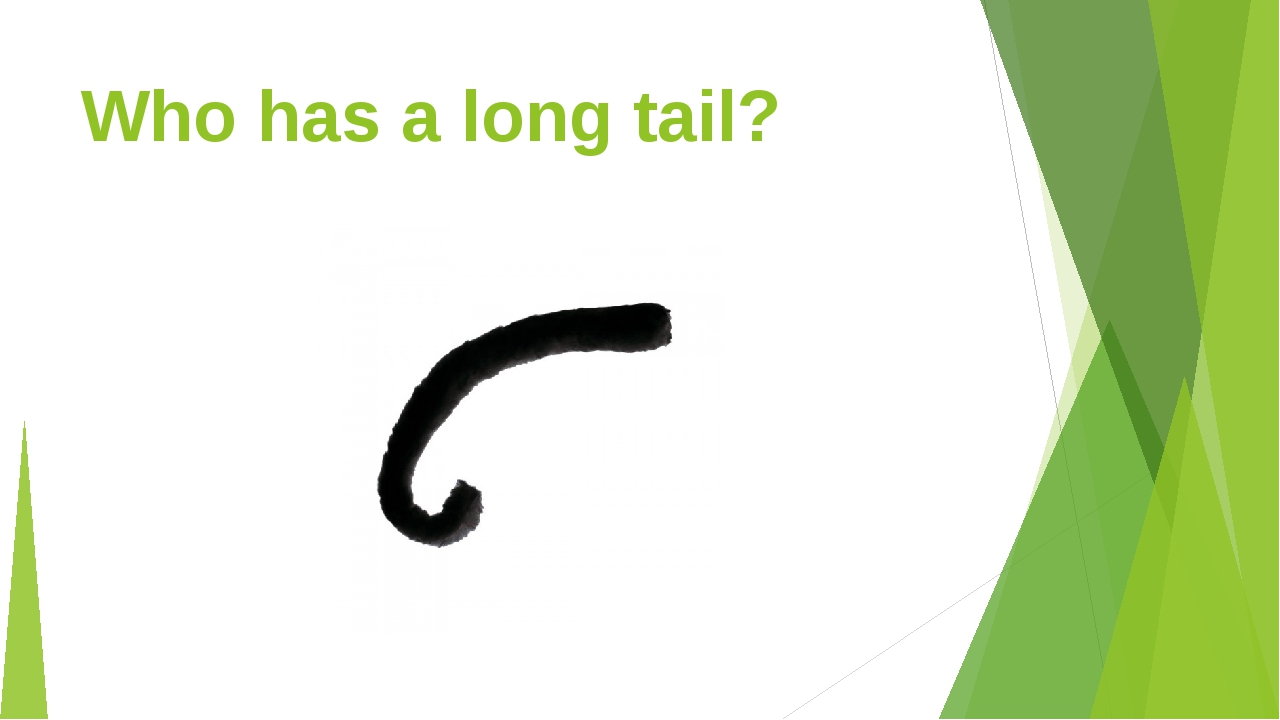 Who has a long tail?