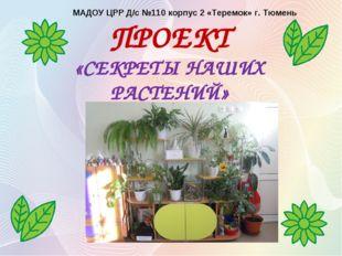 ПРОЕКТ «CЕКРЕТЫ НАШИХ РАСТЕНИЙ» МАДОУ ЦРР Д/с №110 корпус 2 «Теремок» г. Тюмень