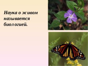Наука о живом называется биологией.