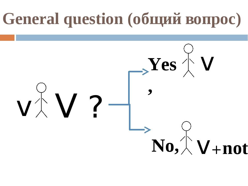 General question (общий вопрос) v V ? Yes, v No, v+not