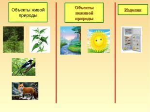 Объекты живой природы Объекты неживой природы Изделия