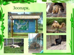Зоопарк.