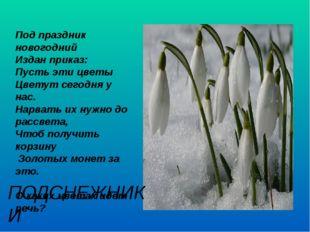 Под праздник новогодний Издан приказ: Пусть эти цветы Цветут сегодня у нас.