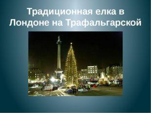 Традиционная елка в Лондоне на Трафальгарской площади