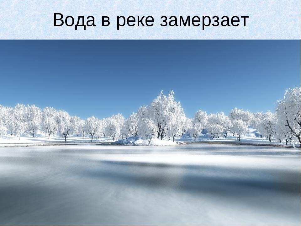 Вода в реке замерзает
