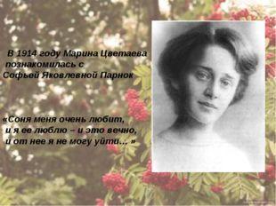 В 1914 году Марина Цветаева познакомилась с Софьей Яковлевной Парнок «Соня