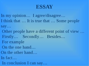 ESSAY In my opinion… I agree/disagree… I think that … It is true that … Some