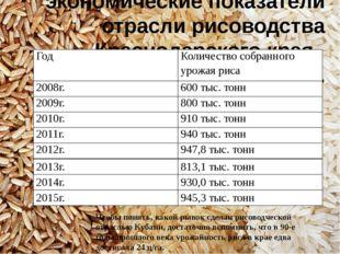 Производственные и экономические показатели отрасли рисоводства Краснодарског