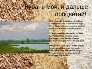 Мне свои зори Славянск-на-Кубани, С давнишних лет взволнованно дарит, Тут в ч