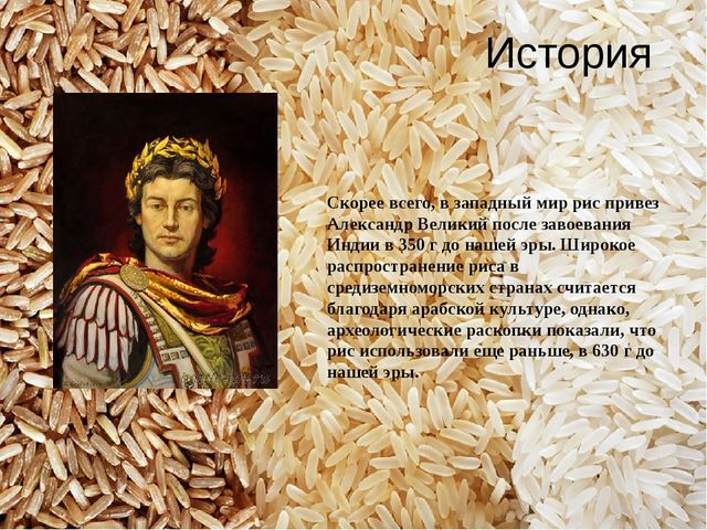 История Скорее всего, в западный мир рис привез Александр Великий после завое...
