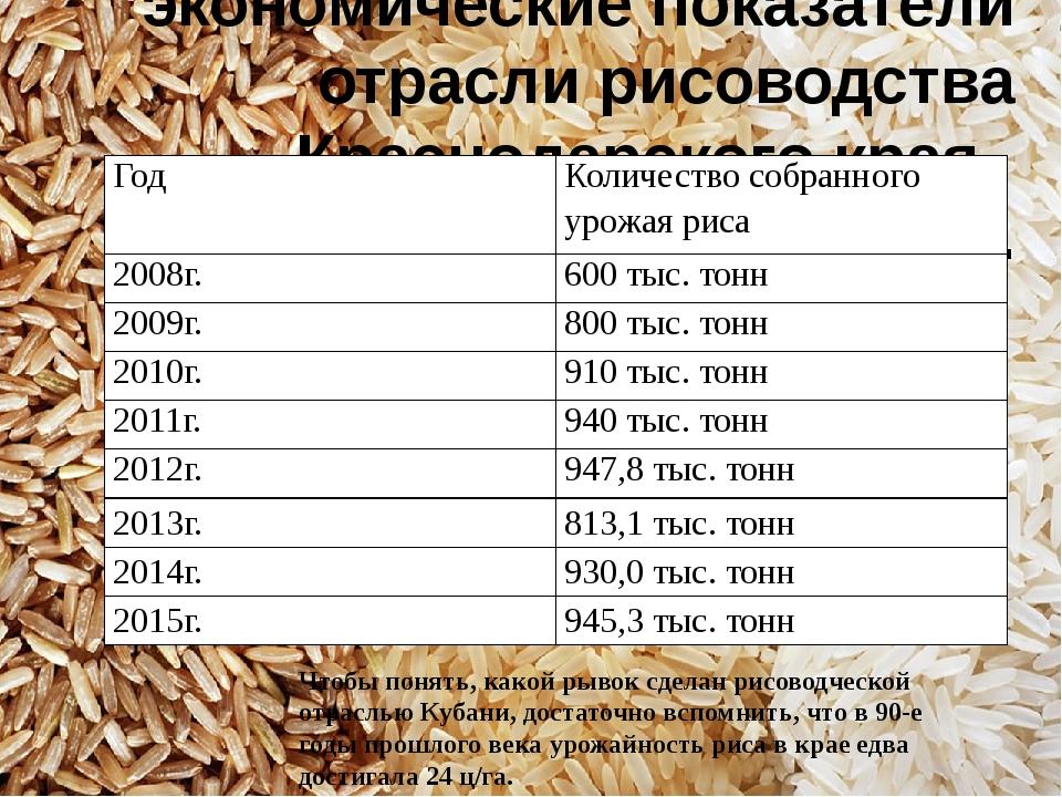 Производственные и экономические показатели отрасли рисоводства Краснодарског...