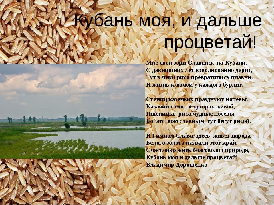 Мне свои зори Славянск-на-Кубани, С давнишних лет взволнованно дарит, Тут в ч...