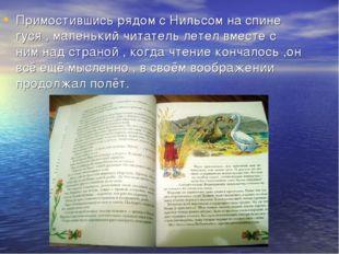 Примостившись рядом с Нильсом на спине гуся , маленький читатель летел вместе