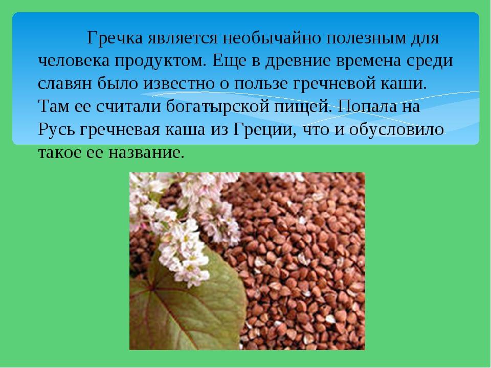 Гречка является необычайно полезным для человека продуктом. Еще в древние вр...