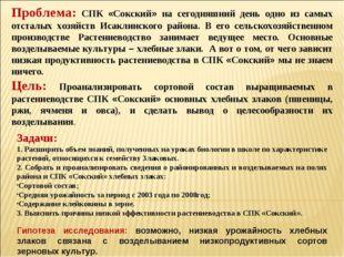 Проблема: СПК «Сокский» на сегодняшний день одно из самых отсталых хозяйств И