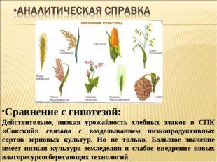 Сравнение с гипотезой: Действительно, низкая урожайность хлебных злаков в СПК