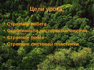 Цели урока: Строение побега Особенности листорасположения Строение почек Стро