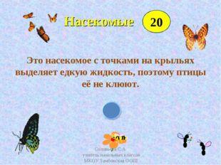 Насекомые Это насекомое с точками на крыльях выделяет едкую жидкость, поэтом