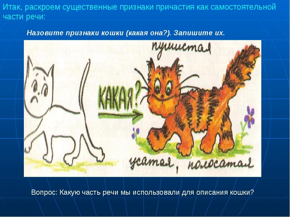 Назовите признаки кошки (какая она?). Запишите их. Вопрос: Какую часть речи м...