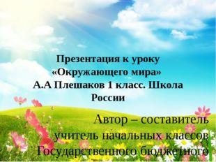 Презентация к уроку «Окружающего мира» А.А Плешаков 1 класс. Школа России Авт