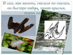 И сам, как камень, скользя по скалам, он быстро падал, ломая крылья, теряя пе