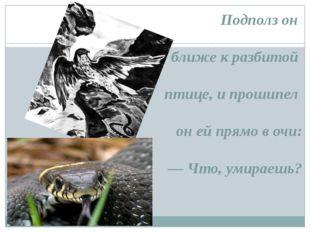Подполз он ближе к разбитой птице, и прошипел он ей прямо в очи: — Что, умир