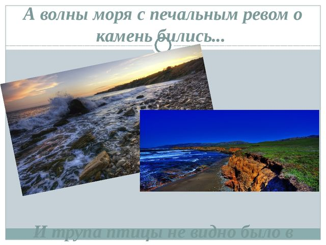 А волны моря с печальным ревом о камень бились... И трупа птицы не видно было...