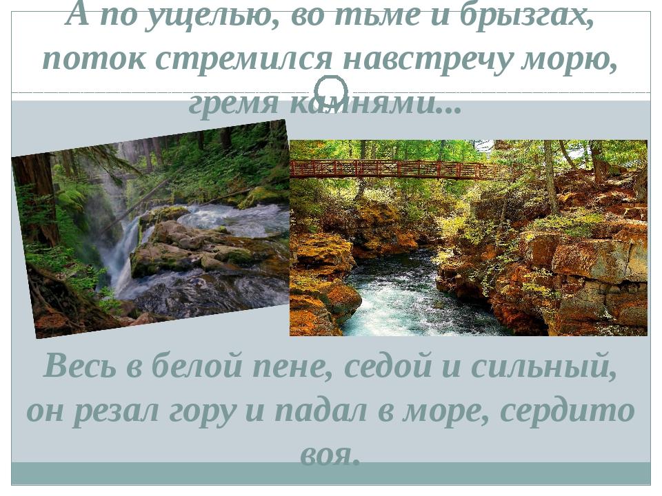А по ущелью, во тьме и брызгах, поток стремился навстречу морю, гремя камнями...