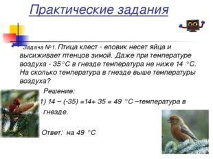 Задача №1. Птица клест - еловик несет яйца и высиживает птенцов зимой. Даже