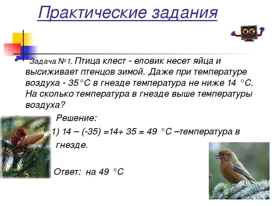 Задача №1. Птица клест - еловик несет яйца и высиживает птенцов зимой. Даже...