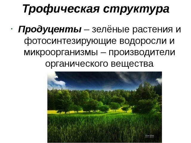 Трофическая структура Продуценты – зелёные растения и фотосинтезирующие водор...