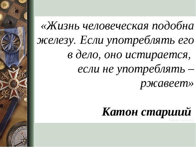 «Жизнь человеческая подобна железу. Если употреблять его в дело, оно истирает...