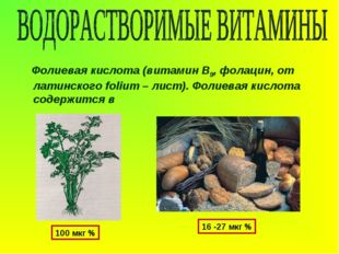 Фолиевая кислота (витамин В9, фолацин, от латинского folium – лист). Фолиева