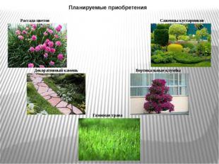 Планируемые приобретения Рассада цветов Саженцы кустарников Декоративный каме