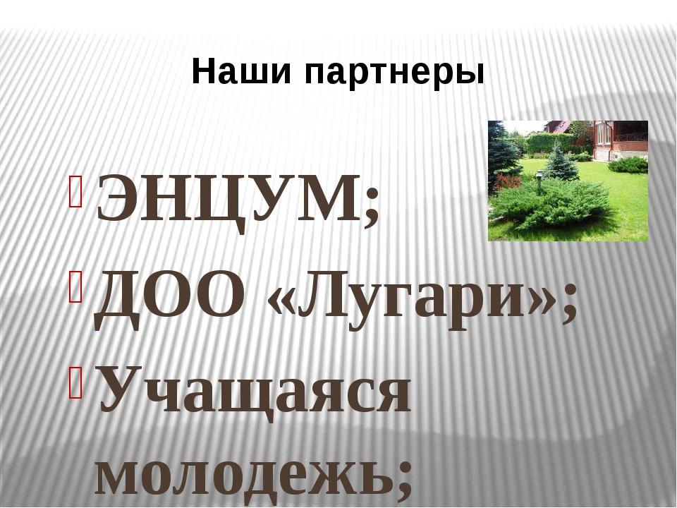 ЭНЦУМ; ДОО «Лугари»; Учащаяся молодежь; Родительская общественность; Выпускни...
