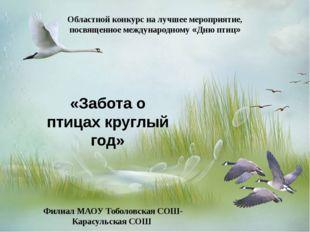 «Забота о птицах круглый год» Филиал МАОУ Тоболовская СОШ- Карасульская СОШ