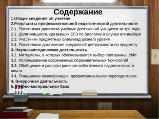 2. Результаты профессиональной педагогической деятельности