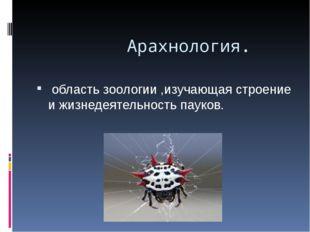 Арахнология. область зоологии ,изучающая строение и жизнедеятельность пауков