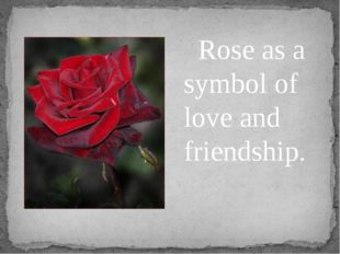 Rose as a symbol of love and friendship.