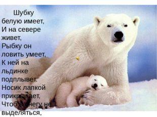 Шубку белую имеет, И на севере живет, Рыбку он ловить умеет, К ней на льдинк