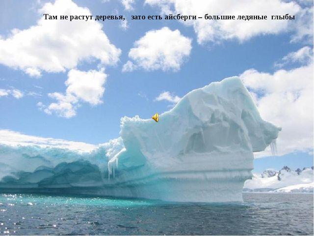 Там не растут деревья, зато есть айсберги – большие ледяные глыбы