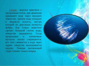 Сальпа- морское животное с прозрачным телом, при движении принимает воду че