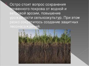 Остро стоит вопрос сохранения почвенного покрова от водной и ветровой эрозии,
