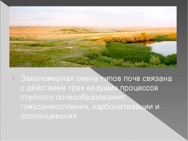 Закономерная смена типов почв связана с действием трех ведущих процессов степ...