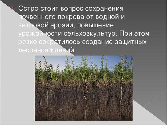 Остро стоит вопрос сохранения почвенного покрова от водной и ветровой эрозии,...